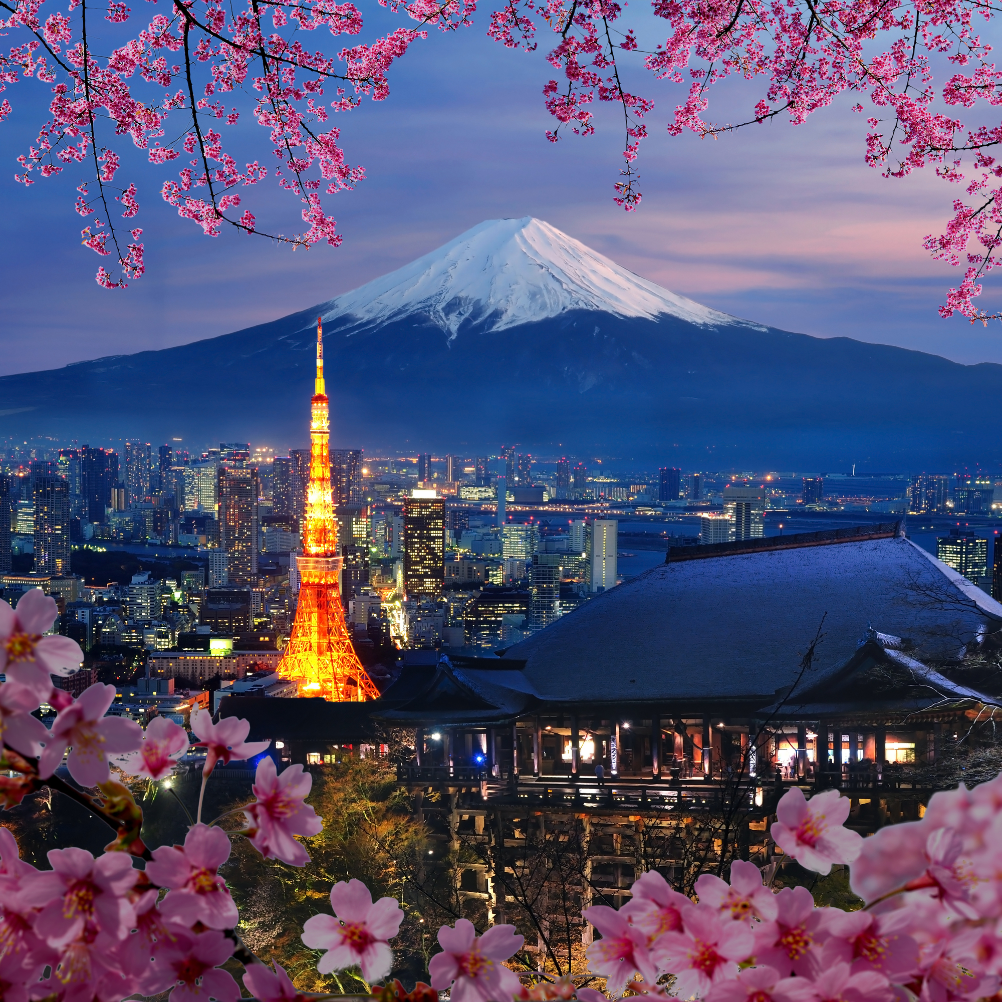 Mt. Fuji and Tokyo Tower in Japan