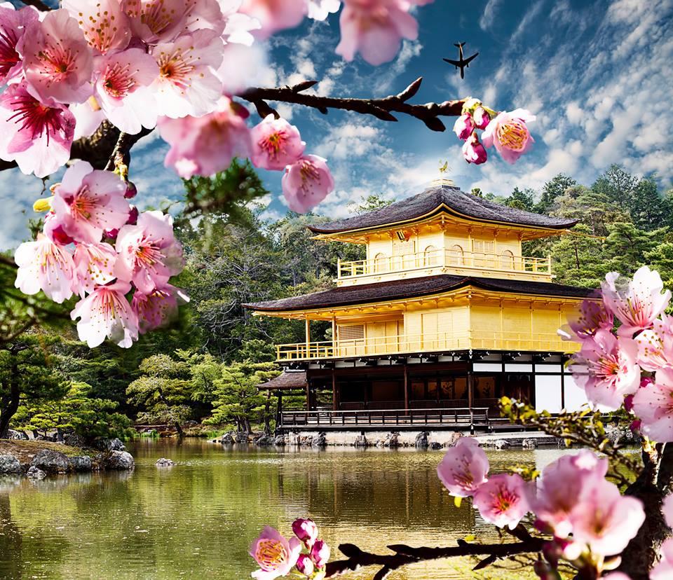 Kinkaku ji Temple Kyoto - Kyoto