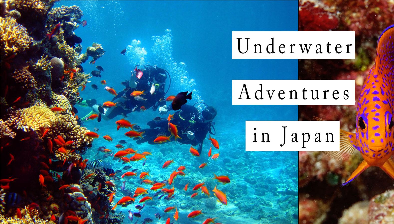 Diving Cover - Underwater Adventures: Scuba Diving in Japan